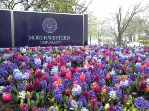 (via northwesternu.tumblr.com)